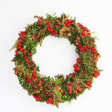 Decorative autumn wreath with moss, berries and tiny apples Royalty Free Stock Image