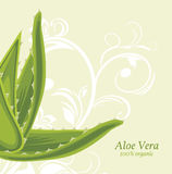 Decorative background with aloe vera Royalty Free Stock Images