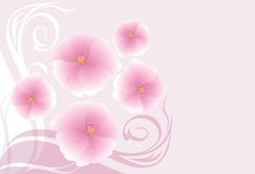 Decorative background with blooming pink flowers Stock Images