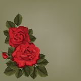 Decorative background with bouquet of rose for invitation Royalty Free Stock Photo