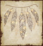 Decorative background with feathers. Decorative vector ethnic background with feathers Royalty Free Stock Photo