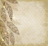 Decorative background with feathers. Decorative vector ethnic background with feathers Stock Images