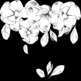 Decorative background with flowers. Decorative black background with flowers Stock Photography