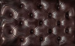 Decorative background of genuine leather with coach-type screed capitone chesterfield texture. Decorative background of genuine leather capitone texture Royalty Free Stock Images