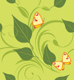 Decorative background with leaves and butterflies Stock Photos