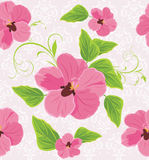 Decorative background with pink flowers Stock Photos