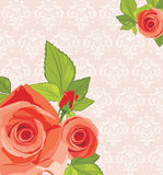 Decorative background with red roses. Illustration Royalty Free Stock Photo