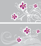 Decorative backgrounds with stylized pelargonium flowers Royalty Free Stock Image