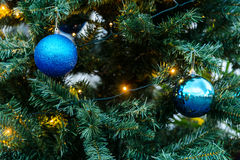 The Decorative ball on Christmas tree Stock Photography