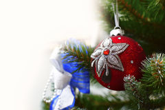 Decorative ball on the Christmas tree Stock Image