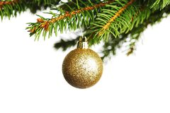 Decorative ball on fir branch Royalty Free Stock Images