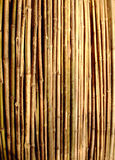 Decorative Bamboo Stock Images