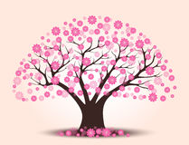 Decorative beautiful cherry blossom tree with background. Full color Stock Photos