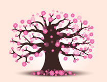 Decorative beautiful cherry blossom tree with background. Full color Stock Photography