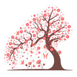 Decorative beautiful cherry blossom tree. Full color Stock Photography