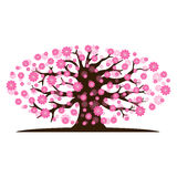 Decorative beautiful cherry blossom tree. Full color Stock Photo