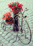 Decorative bicycle with flower pots stock image