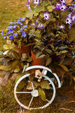 Decorative bicycle with flowers in the garden Royalty Free Stock Images