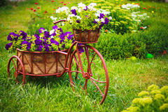 Decorative Bicycle In Garden Royalty Free Stock Image