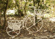 Decorative Bicycle Stock Photos