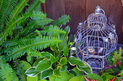 Decorative bird cage in green garden Stock Image