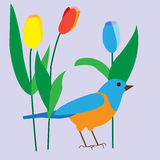 Decorative bird among the delicate tulips, poster, greeting card Royalty Free Stock Photo