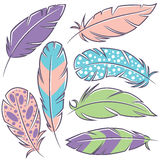 Decorative bird feathers collection Royalty Free Stock Image