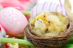 Decorative bird in a nest over easter background Stock Photo