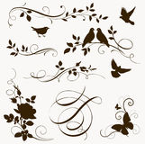 Decorative bird and tree branch silhouettes for page decor Royalty Free Stock Photo