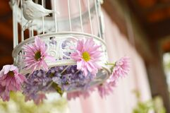 Decorative birdcage Stock Photo