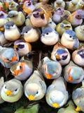 decorative birds Royalty Free Stock Images