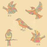 Decorative birds Stock Photos