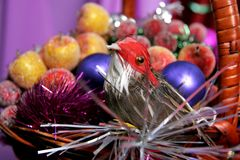 Decorative birdy Stock Photography