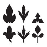 Decorative black leaves pattern set isolated on white .. Various shapes of black leaves. Elements for eco and bio logos Royalty Free Stock Photos