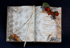 Decorative book Royalty Free Stock Images