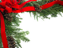 Decorative border with red ribbon bow cones Royalty Free Stock Photo