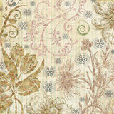 Decorative botanical paper texture Stock Photography