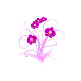 Decorative bouquet purple orchid Royalty Free Stock Images