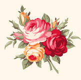 Decorative bouquet of vintage roses. Vector antique flowers Royalty Free Stock Image