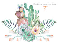 A decorative bouquet with the watercolor floral elements: succulents, flowers, leaves and branches. On a white background, for a greeting card or invitation Stock Image