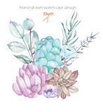 A decorative bouquet with the watercolor floral elements: succulents, flowers, leaves and branches Stock Photos