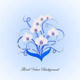 Decorative bouquet of white orchid Royalty Free Stock Images