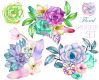 A decorative bouquets with the watercolor floral elements: succulents, flowers, leaves and branches Royalty Free Stock Image