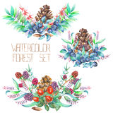 A decorative bouquets with the watercolor forest elements: blackberries, barberries, cones, branches and blueberries Stock Photography