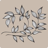 Decorative branch with leaves, hand-drawing. Vector illustration Stock Image