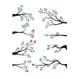 Decorative Branch Tree Silhouette With colorful Flower Royalty Free Stock Photos