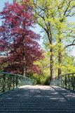 Decorative bridge in The Loo park Stock Image