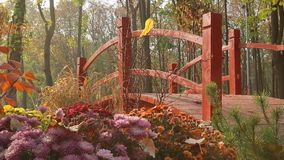Decorative bridge in the park stock footage