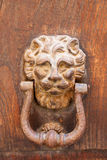 Decorative bronze lion head door knob Royalty Free Stock Photos