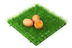 Decorative brown eggs Royalty Free Stock Images